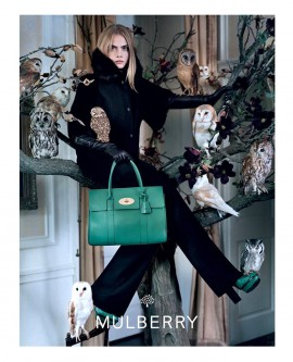cara-delevingne-for-mulberry-autumn-winter-2013-campaign