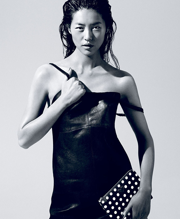 Photo of Liu Wen